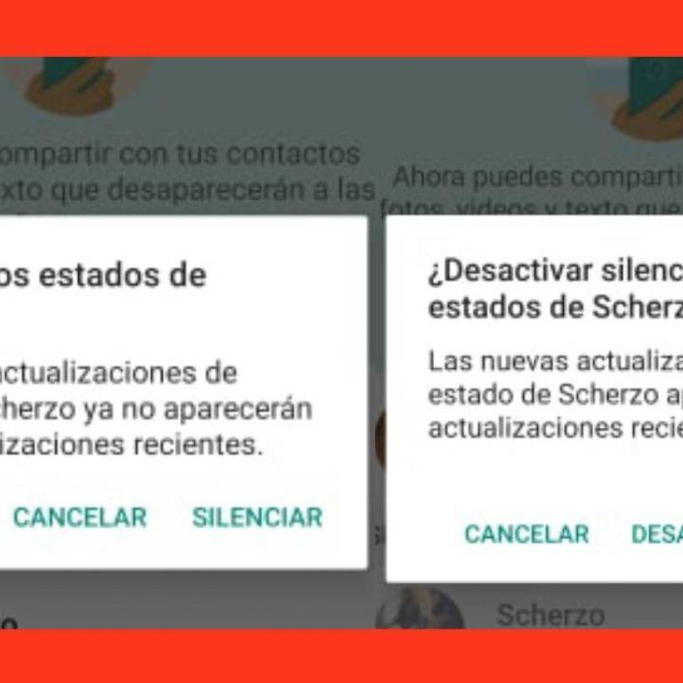 Descubre como silenciar las historias en WhatsApp