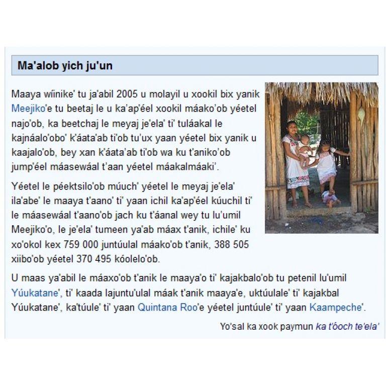 Wikipedia, Google y Firefox se leen en maya.