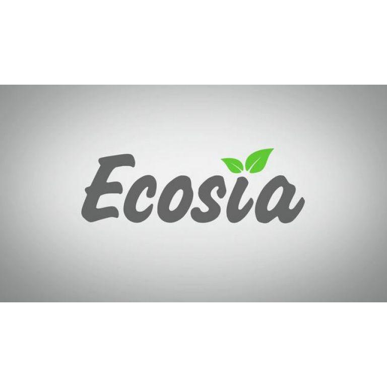 El buscador Ecosia dona el 80% de sus ganancias para la protección del bosque tropical