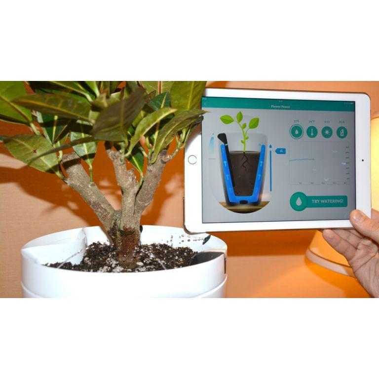 Parrot Pot y Parrot H2O las macetas inteligentes