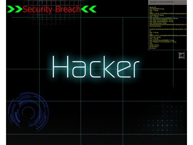 Piratas y hackers, protagonistas de delitos informáticos en los últimos meses
