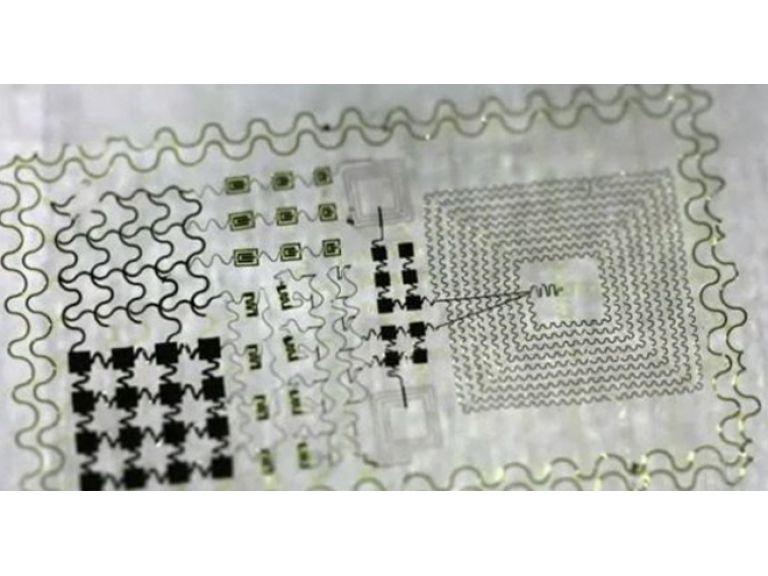 Diseñan circuitos electrónicos que se adhieren a los tejidos vivos.