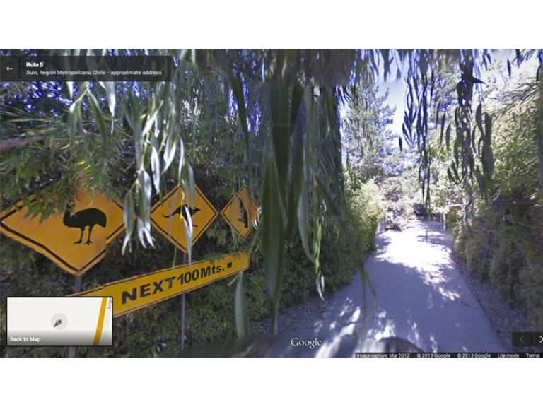 Ahora Google Street View muestra el interior de los zoológicos
