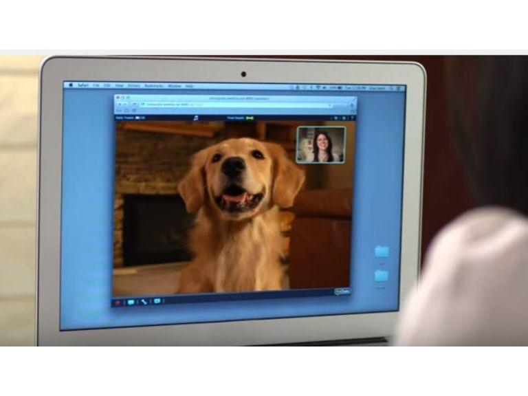 Gracias a la tecnología, ahora puedes chatear con tus mascotas